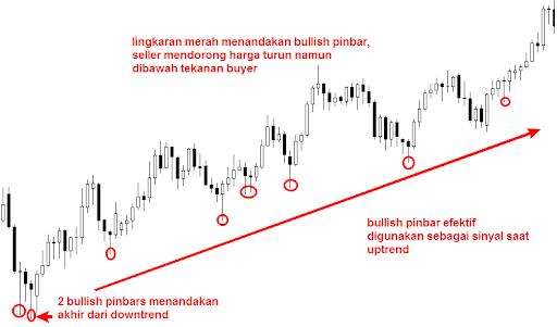 Bull Pinbar Candle Forex