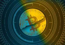 bear-market-bitcoin-tokocrypto