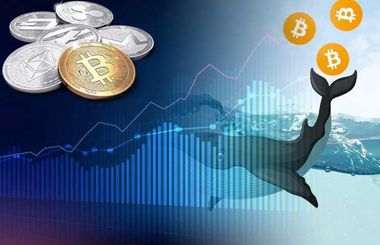 strategia bitcoin)