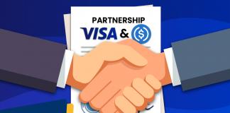visa dan usdc