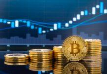 Inilah Beberapa Alasan Penyebab Harga Bitcoin Fluktuatif