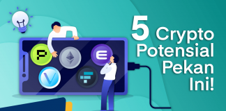 5 crypto potensial