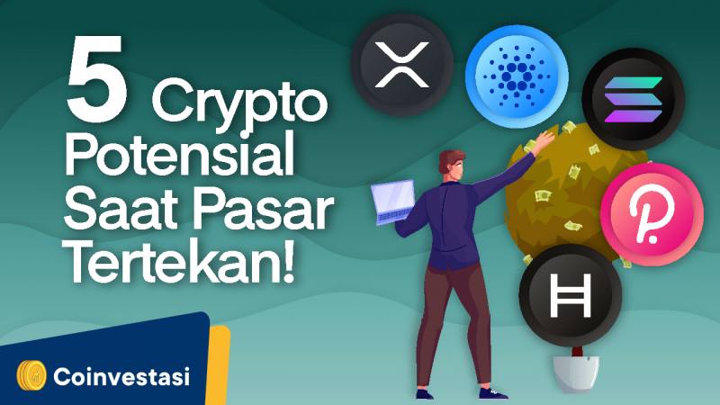5 Crypto Potensial Pekan Ini Saat Pasar Tertekan - Tokocrypto News