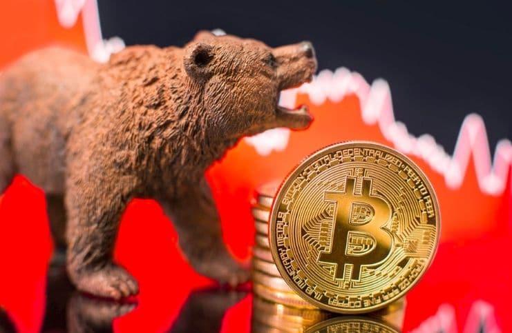 Cara Cuan Ketika Market Bearish! - Tokocrypto News
