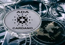 Simak Penjelasan Lengkap Mengenai Cardano Coin